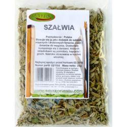 Szałwia